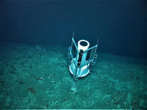 UCC's deep sea monitoring system at the edge of the submarine canyon where it collects marine environmental data for months at a time