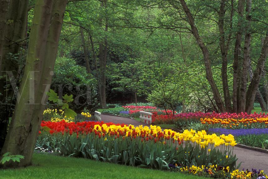AJ0728, Netherlands, Keukenhof Gardens, Beautiful tulips adorn the grounds of Keukenhof Gardens in Lisse.