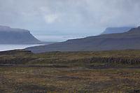 Westfjorde Islands, Westfjorde, Westfjord, Fjord, Ffordlandschaft,Tundra, Island, Westfjords, Iceland