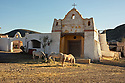 Spain - Andalusia - Horses running wild in the Mexican pueblo at Fort Bravo.