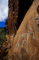 Well preserved Native Hawaiian petroglyphs on a rock face in Olowalu, Maui.