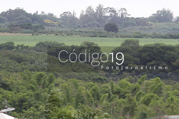 Campinas (SP), 17/01/2020 - Area do IAC em Campinas próximo a rodovia Zeferino Vaz.