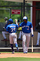 Toronto Blue Jays Justin Ammons (29) high fives Rainer Nunez (68) after hitting a home run during an Extended Spring Training game against the Philadelphia Phillies on June 12, 2021 at the Carpenter Complex in Clearwater, Florida. (Mike Janes/Four Seam Images)