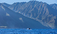 "A humpback whale does a ""fluke down"" dive near the Na Pali Coast of Kaua'i."