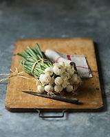 Gastronomie: Oignons botte ou  oignons nouveaux // Gastronomy,  Bunch  Spring Onions