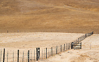 A fine art western landscape of a ranch fence leading past a ranch cattle gate and towards rolling, golden hills, resulting in 2 fence lines converging in the lower right, before a hill pattern descending from the upper left to lower right.