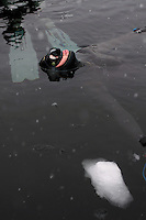 Freediving competition Oslo Ice Challenge at freshwater lake Lutvann outside the Norwegian capital Oslo. Atheletes, including current and former world champions, entered a hole in the ice to compete. The participants reached depths down to 52 meters below the surface.