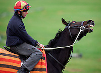 Trackwork at Sandown. Vinnie Roe reacts . Track rider Jeffrey Byrne in the saddle. - pic by Trevor Collens.