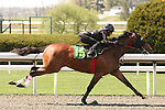 07 April 2011.  Hip #15 Awesome Again - Mamselle Aries filly consigned by Eddie Woods.