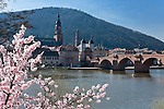 Germany, Baden-Wuerttemberg, Heidelberg at river Neckar: Old Bridge with gate, Church of the Holy Spirit at background | Deutschland, Baden-Wuerttemberg, Heidelberg am Neckar: Brueckentor am Suedende der Alten Bruecke und Turm der Heiliggeistkirche