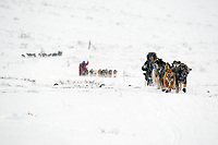 Sebastian Schnuelle runs ahead of Paul Gebhart and Rick Swenson in Ptarmigan Valley on their way to Rainy Pass shortly after leaving the Rainy Pass checkpoint in the Alaska Range during Iditarod 2009