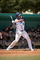Lasell Lasers Chris Maringo (28) at bat during the first game of a doubleheader against the Edgewood Eagles on March 14, 2016 at Terry Park in Fort Myers, Florida.  Edgewood defeated Lasell 10-2.  (Mike Janes/Four Seam Images)