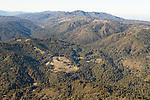 Coniferous forest covering mountains, Santa Cruz Mountains, Monterey Bay, California