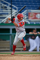 Williamsport Crosscutters Hunter Hearn (25) at bat during a NY-Penn League game against the Batavia Muckdogs on August 27, 2019 at Dwyer Stadium in Batavia, New York.  Williamsport defeated Batavia 11-4.  (Mike Janes/Four Seam Images)