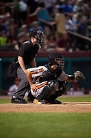 Aberdeen IronBirds catcher Alfredo Gonzalez (19) waits to receive a pitch in front of home plate umpire Dylan Bradley during a game against the Tri-City ValleyCats on August 27, 2018 at Joseph L. Bruno Stadium in Troy, New York.  Aberdeen defeated Tri-City 11-5.  (Mike Janes/Four Seam Images)
