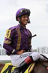 July 05, 2014:  Heart Stealer (KY) with jockey Edgard Zayas on board wins the Paseana Stakes at Gulfstream Park in Hallandale Beach FL. Liz Lamont/ESW/CSM