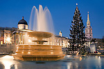 United Kingdom, London: Trafalgar Square at dusk at Christmas