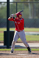 Cincinnati Reds catcher Pabel Manzanero (83) at bat during an Instructional League game against the Oakland Athletics on September 29, 2017 at Lew Wolff Training Complex in Mesa, Arizona. (Zachary Lucy/Four Seam Images)