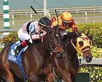 HALLANDALE BEACH, FL - DECEMBER 16:   #3 Lewis Bay (KY) wth jockey Irad Ortiz Jr on board and #1 Curlin's Approval with jockey Luis Saez on board, battle to take the lead in the Rampart Stakes GIII at Gulfstream Park on December 16, 2017 in Hallandale Beach, Florida. (Photo by Liz Lamont/Eclipse Sportswire/Getty Images)