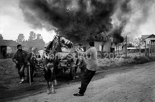 Grace, Kosovo  <br /> 1999<br /> <br /> Albanian Kosovars returning home after months of hiding from the Serb military who looted and burnt their homes.<br /> <br /> In retaliation the former refugees loot and burn the homes of ethnic Serbs who have fled with the military.