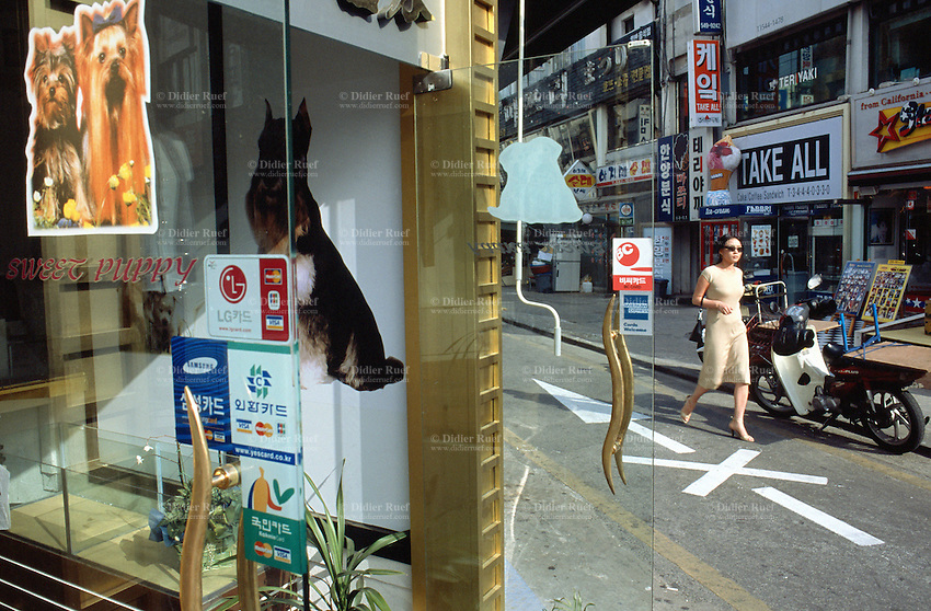 Korea. South Korea.  Seoul.  Elegant woman walks in the streets. She holds her handbag and goes around for shopping. On the left corner, the sweeet puppy is a pet beauty shop with dogs photos on the glass door.  © 2002 Didier Ruef
