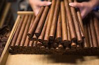 France, Aquitaine, Pyrénées-Atlantiques, Béarn, Navarrenx: La Maison du cigare, Cigares Navarre, Confection des cigares Navarre  //  France, Pyrenees Atlantiques, Bearn, Navarrenx: La Maison du cigare, Cigares Navarre ,  Making up of the Navarre cigar