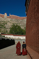 "Tibet - Shigatse  The Tashilunpo Monastery from the front gate. - the home of the Panchen Lamas - revered by the Tibetians only second to the Dali Lamas, (brown clay walls and big).The city is primarily noted for its Tashilhunpo Monastery, built in 1447, a historic and culturally important monastery. Situated on a hillside in the center of the city, the Tibetan name means ""all fortune and happiness gathered here"".  The monastery is the traditional seat of successive Panchen Lamas, the second highest ranking lineage in the Gelukpa Buddhism, the ruling sect in Tibet from the sixteenth century until Chinese occupation in 1950...This monastery was originally built by the First Dalai Lama, Gedun Drub, and was financed by donations from local nobles.  The Fourth Panchen Lama made major expansions to the monastery in the seventeenth century. Since then all Panchen Lamas have resided at Tashilhunpo, and have managed to expand it gradually.   It is one of the largest remaining Buddhist monasteries in Tibet today, with an estimated 4,000 monks within its walls...Lobsang Trinley Choekyi Gyaltsen, the 10th Panchen Lama died mysteriously in 1989 in Shigatse at the age of 51.  He and most of the other Panchen Lamas are buried within the monastery. ..The Dali Lama traditionally searches for the reincarnation of the Panchen Lama, and the Panchen Lama is likewise responsible for searching for any new Dali Lama.  The Dali Lama in exile performed a search, but his selection was not recognized by the Chinese authorities.  Doing their own search, they have recognized Erdini Qoigyijabu as the 11th reincarnation of the Panchen Lama.  He is currently studying in Beijing and the Dali Lam?s choice and his family are believed to have been under ""protective custody"" in Beijing since 1995...If all of this seems a little strange, I strongly recommend at 1997 firm directed by Martin Scorsese called Kundun, about the search for and rule by the current Dali Lama until his exile in 1959. .."