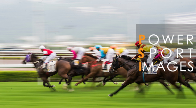 Horse My Folks (2nd r) ridden by Karis Teetan competes during the Race 2, Tim Wa Handicap, at the Sha Tin Racecourse on 03 September 2017 in Hong Kong, China. Photo by Marcio Rodrigo Machado / Power Sport Images