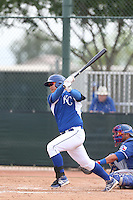 Jin-Ho Shin #17 of the Kansas City Royals bats during a Minor League Spring Training Game against the Texas Rangers at the Kansas City Royals Spring Training Complex on March 20, 2014 in Surprise, Arizona. (Larry Goren/Four Seam Images)