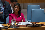 Security Council Considers Letter from United Kingdom