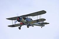 - Royal Air Force, Fairey Swordfish torpedo bomber aircraft of second World War....- Royal Air Force, aerosilurante Fairey Swordfish della seconda Guerra Mondiale