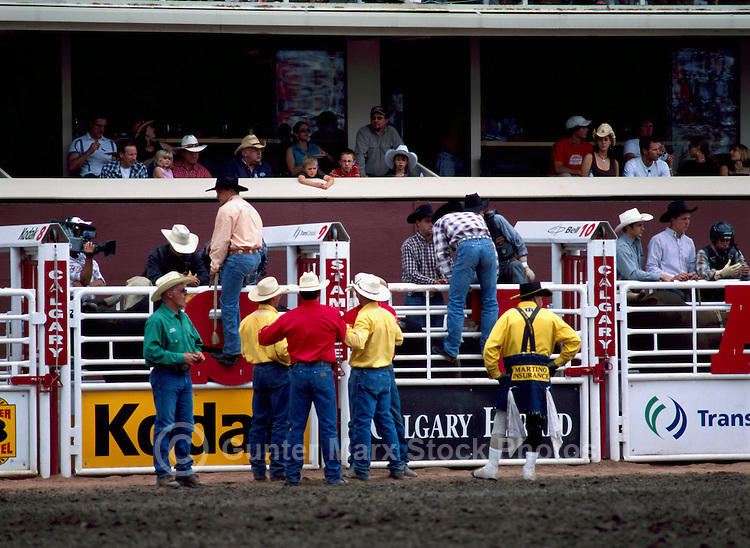 Preparation of Cowboys in Chutes for Riding Events at Calgary Stampede, Calgary, Alberta, Canada - Editorial Use Only