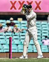 10th January 2021; Sydney Cricket Ground, Sydney, New South Wales, Australia; International Test Cricket, Third Test Day Four, Australia versus India; Tim Paine of Australia catches the ball