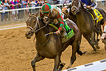"""ELMONT, NEW YORK - OCT 7: Firenze Fire #12, ridden by Irad Ortiz Jr., wins the Champagne Stakes, a """"Win & You're In' event, at Belmont Park on October 6, 2017 in Elmont, New York. ( Photo by Sue Kawczynski/ Eclipse Sportswire/Getty Images)"""