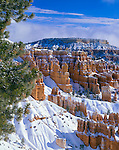 Bryce Canyon National Park, UT<br /> Fresh snow covers the hoodoos and cliffs of the Queens Garden from Sunset Point with Boat Mesa in the distance.