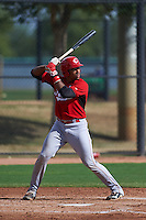 Cincinnati Reds Francis Guerrero (64) during an instructional league game against the Los Angeles Dodgers on October 20, 2015 at Cameblack Ranch in Glendale, Arizona.  (Mike Janes/Four Seam Images)