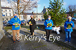 Yellow Ribbons: A memorial tree set up to those who wont be with us for Christmas  at St. Johns Arts Centre, Listowel. L-R: Frank Greaney, Elaine Lyons, Jenny Tarrant & Julie Gleeson.
