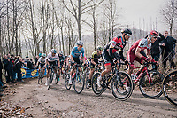 Tony Martin (GER/Katusha-Alpecin), Greg Van Avermaet (BEL/BMC), Wout Van Aert (BEL/Vérandas Willems-Crelan) & Matteo Trentin (ITA/Michelton-Scott) up the Baneberg<br /> <br /> 81st Gent-Wevelgem in Flanders Fields (1.UWT)<br /> Deinze > Wevelgem (251km)