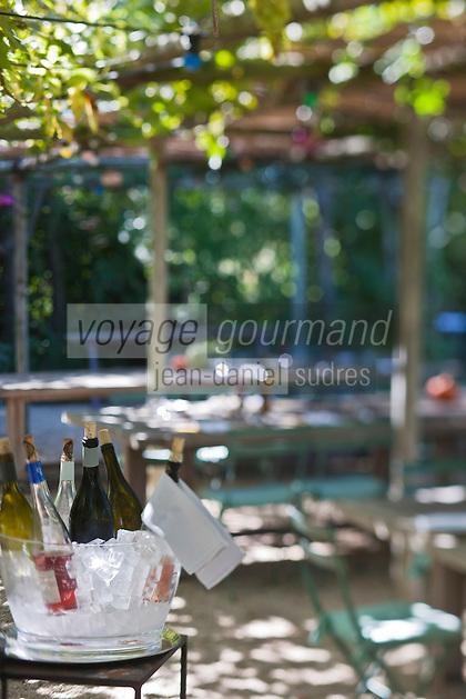 Europe/France/Provence-Alpes-Côte d'Azur/13/Bouches-du-Rhône/Env d'Arles/Le Sambuc: Terrasse du Restaurant Bio: La Chassagnette