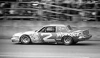 the Daytona 500, Daytona International Speedway, Daytona Beach, FL, February 15, 1981.  (Photo by Brian Cleary/www.bcpix.com)