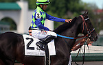 May 24, 2014  Alan Garcia gives a pat to War Dancer before their victory in the G3 Louisville Handicap. The winner was owned by Diamond M Stable and trained by Ken McPeek.  The race was run in 2:28.23, a new stakes record.