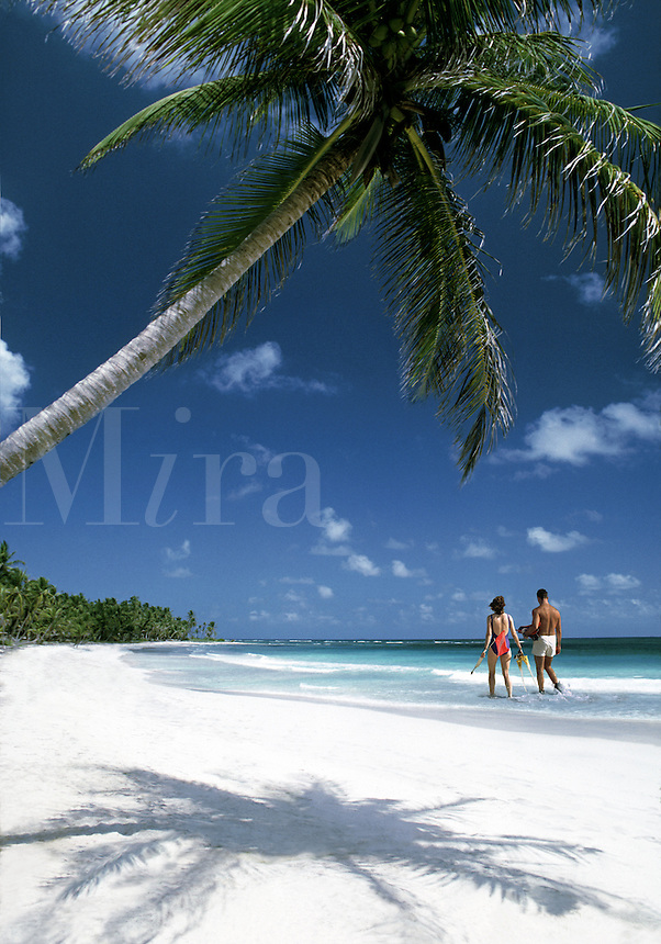 A couple walk on a deserted tropical Caribbean beach with white sand and palm trees.