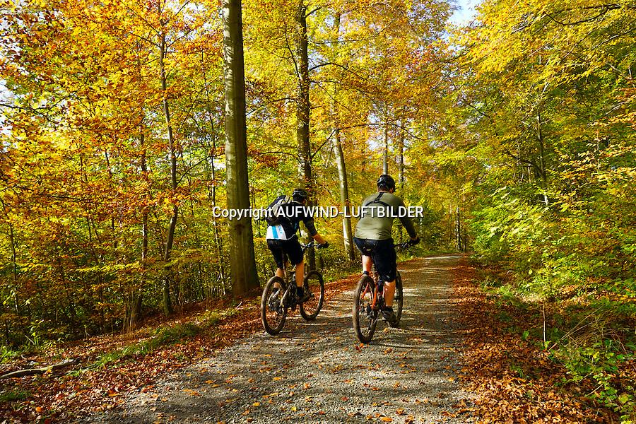 Mountainbiker durch den Herbstwald der Asse: DEUTSCHLAND, NIEDERSACHSEN, REMLINGEN, (GERMANY), 02.11.2014: Mountainbiker durch den Herbstwald der Asse