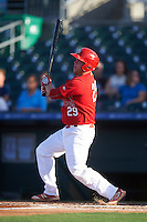 Palm Beach Cardinals first baseman Casey Grayson (29) at bat during a game against the Jupiter Hammerheads  on August 12, 2016 at Roger Dean Stadium in Jupiter, Florida.  Jupiter defeated Palm Beach 9-0.  (Mike Janes/Four Seam Images)