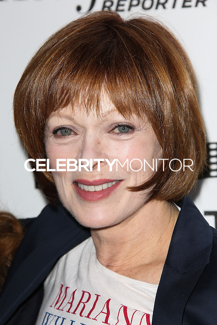 HOLLYWOOD, LOS ANGELES, CA, USA - APRIL 05: Frances Fisher at the 3rd Annual Reel Stories, Real Lives Benefiting The Motion Picture & Television Fund held at Milk Studios on April 5, 2014 in Hollywood, Los Angeles, California, United States. (Photo by Celebrity Monitor)