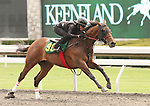 07 April 2011.  Hip #96 Songandaprayer - Backroom Blues filly, consigned by Eddie Woods.