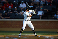 Michael Ludowig (22) of the Wake Forest Demon Deacons at bat against the North Carolina State Wolfpack at David F. Couch Ballpark on April 18, 2019 in  Winston-Salem, North Carolina. The Demon Deacons defeated the Wolfpack 7-3. (Brian Westerholt/Four Seam Images)