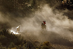 Cowboy roping a white horse in the sunlight shining through the dust in Oregon