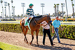 ARCADIA, CA  JULY 5:  #5 Gamine, ridden by John Velazquez, returns to the connections after winning the Great Lady M Stakes (Grade ll) on July 5, 2021 at Los Alamitos Race Course in Los Alamitos, CA.  (Photo by Casey Pnillips/ Eclipse Sportswire/ CSM)