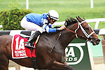 May 9 2015: Wedding Toast with Jose Leszcano win the 38th running of the Grade II Ruffian Stakes for fillies & mares, for 4-year olds & up, going 1 mile at Belmont Park.  Trainer Kiaran McLaughlin. Owner Godolphin Racing LLC. Sue Kawczynski/ESW/CSM